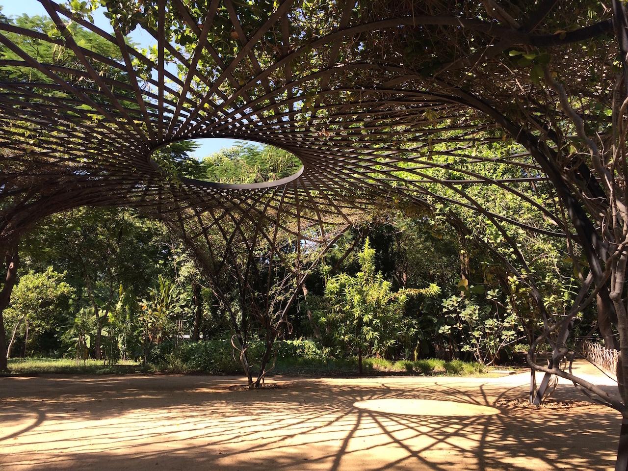 Visitando el jard n bot nico de culiac n designaholic for Foto contemporanea de jardin