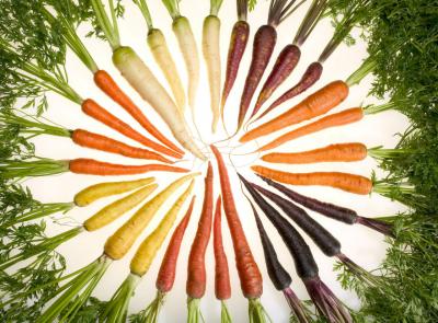 Curran: fibra de carbono a base de zanahorias