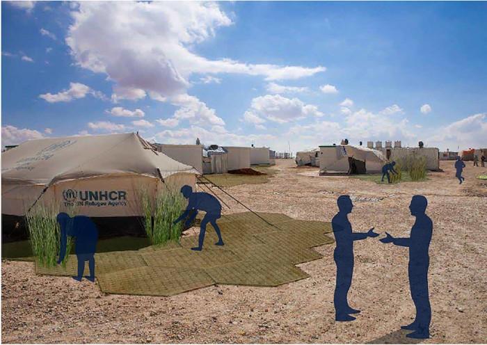 Estudiantes mexicanos desarrollan alfombras para cosechar en campos de refugiados